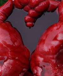 the_blood_of_love_movie_poster